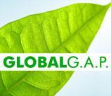 GLOBAL G.A.P. ve İyi Tarim Uygulamaları