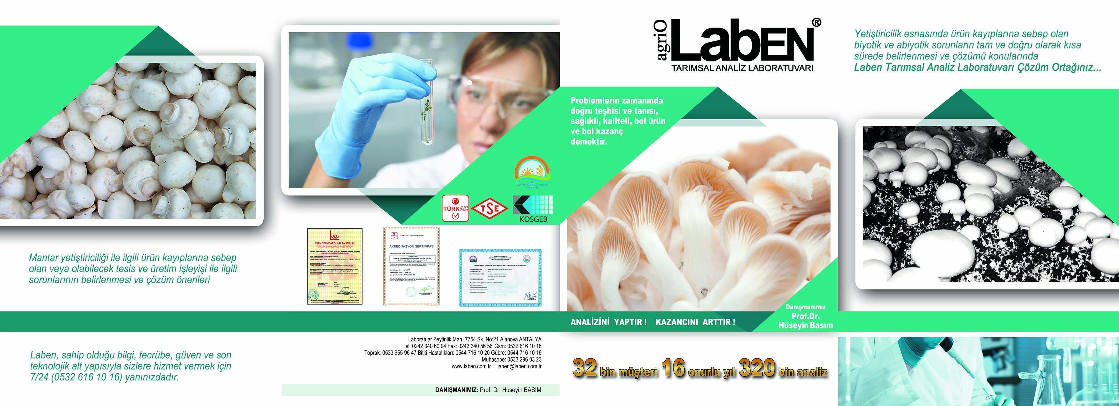 Bitki Hastalıklarının Doğru ve Hızlı Teşhisinin Önemi