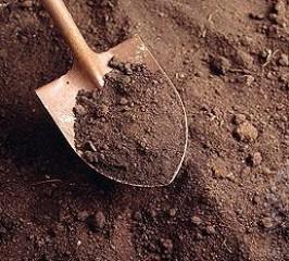 Toprak Örneği Alımı